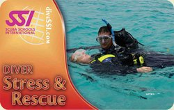 SSI Diver Stress & Rescue Specialty Instructor