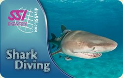 SSI Shark Diving Specialty Instructor