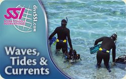 SSI Waves, Tides & Currents Specialty Instructor